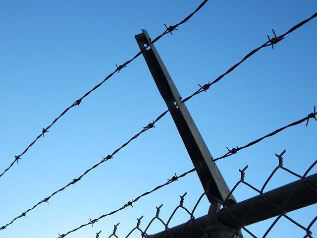 barbed-wire-482608_640